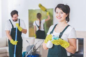 profesjonalni sprzątacze